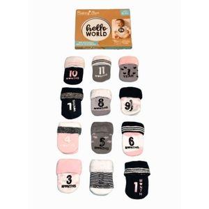 Baby girl milestones stickers and socks